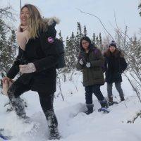 indigenous culture tour, north star adventures
