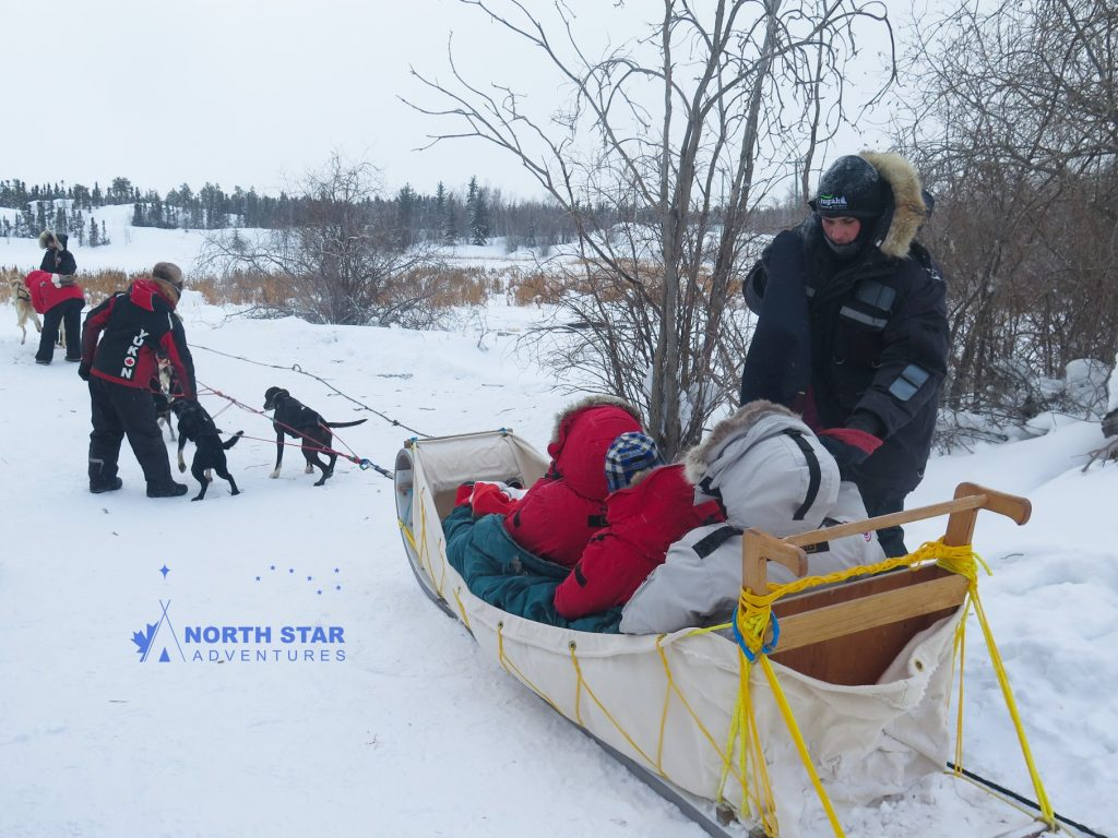 indigenous dogsled tour, dogsled tour, north star adventures