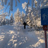 winter wilderness hike, hiking tour, north star adventures